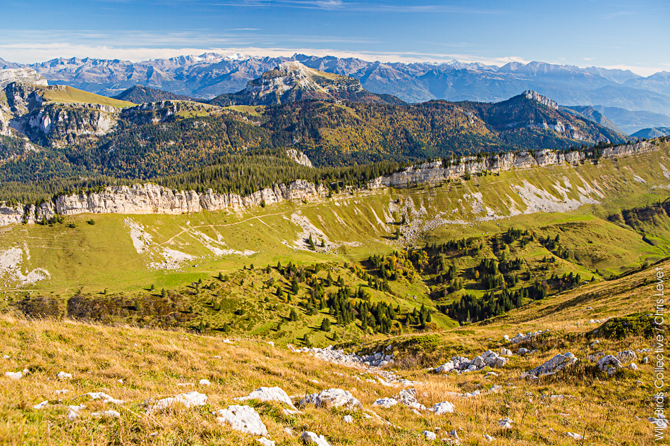 Rando Alpes Chartreuse