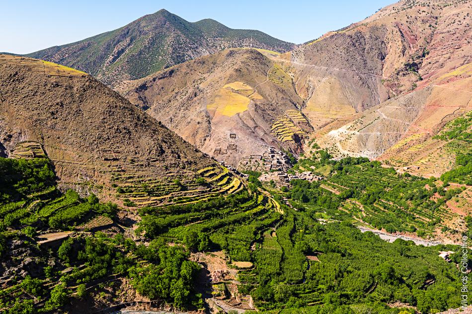 Vallée d'Azaden Toubkal Maroc