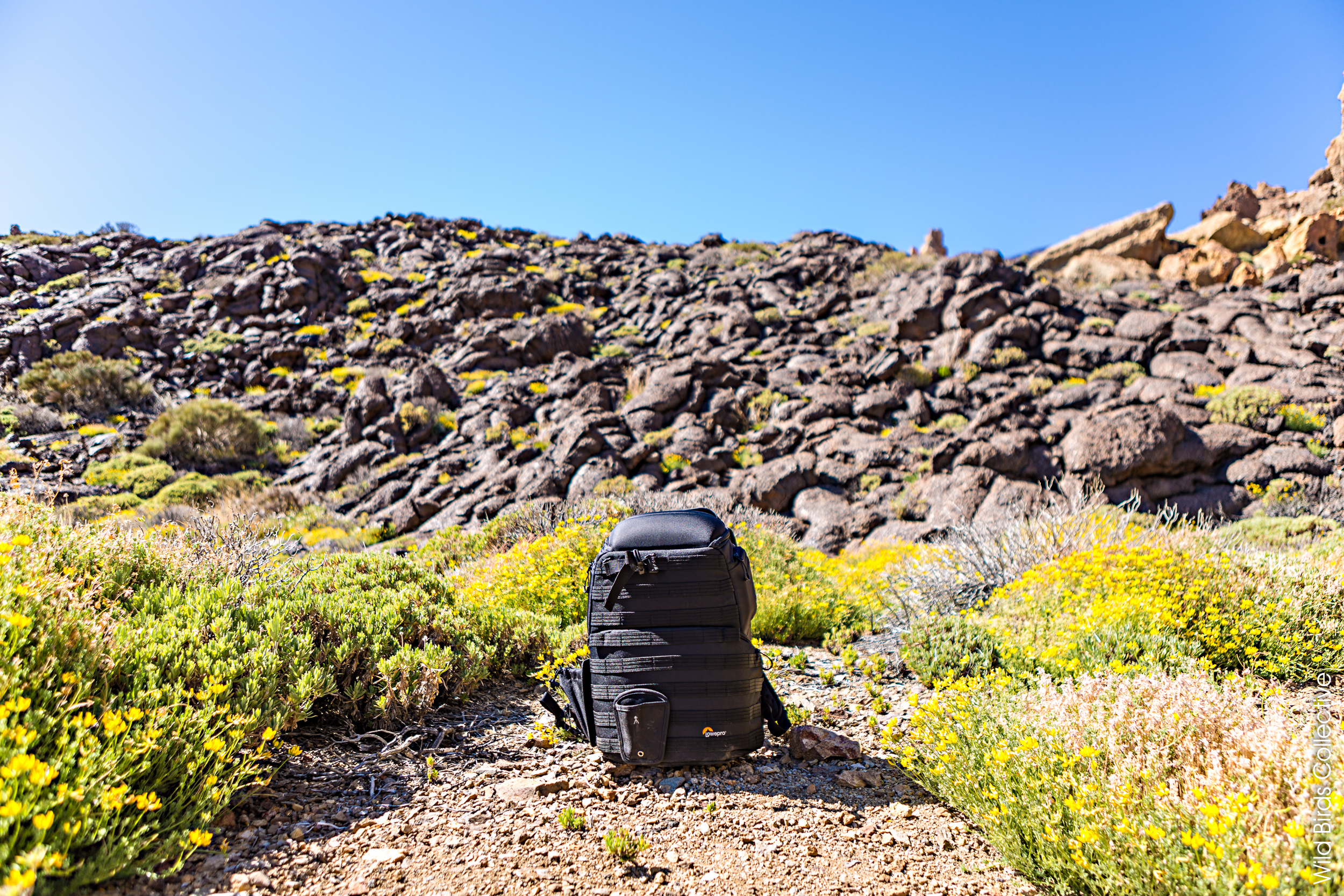 Sac photo Lowepro Protactic 450AW