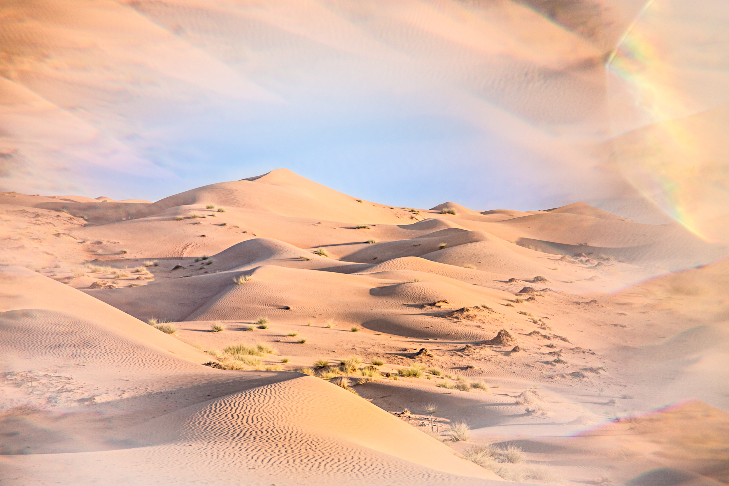 Dunes du désert de Wahiba Sands