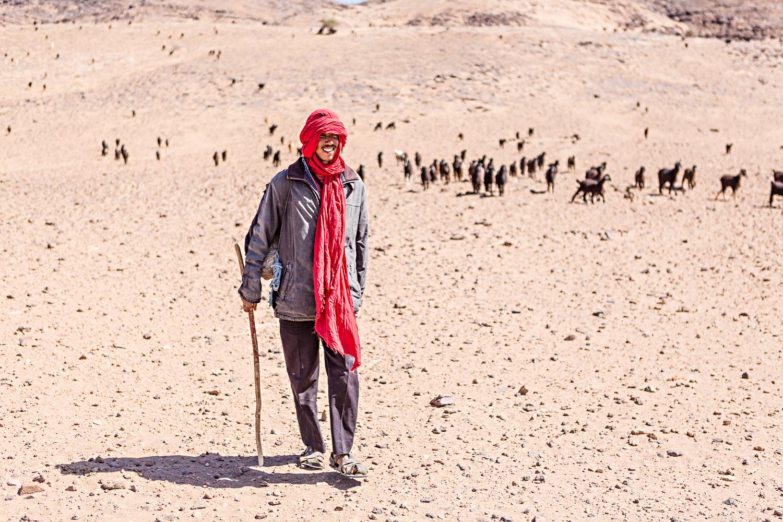 Berger et chèvres au Maroc