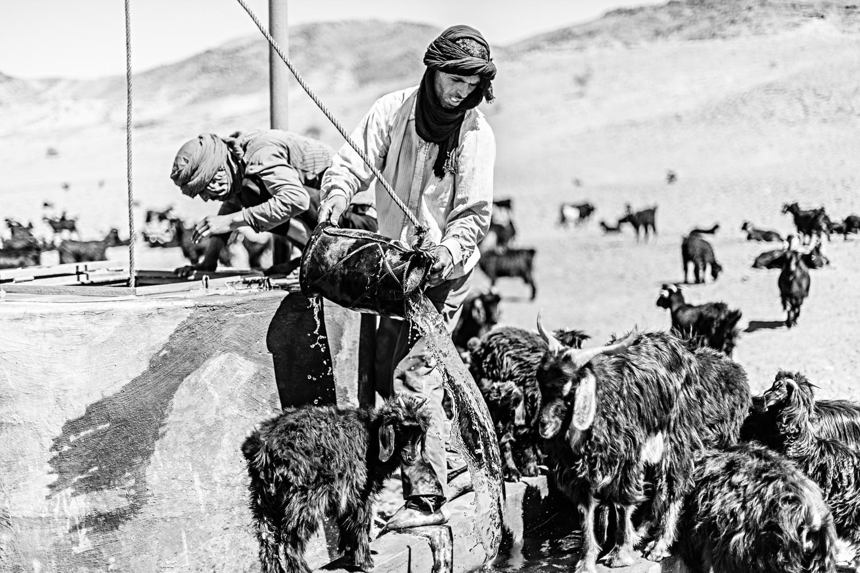 Bergers, chèvres et puit au Maroc