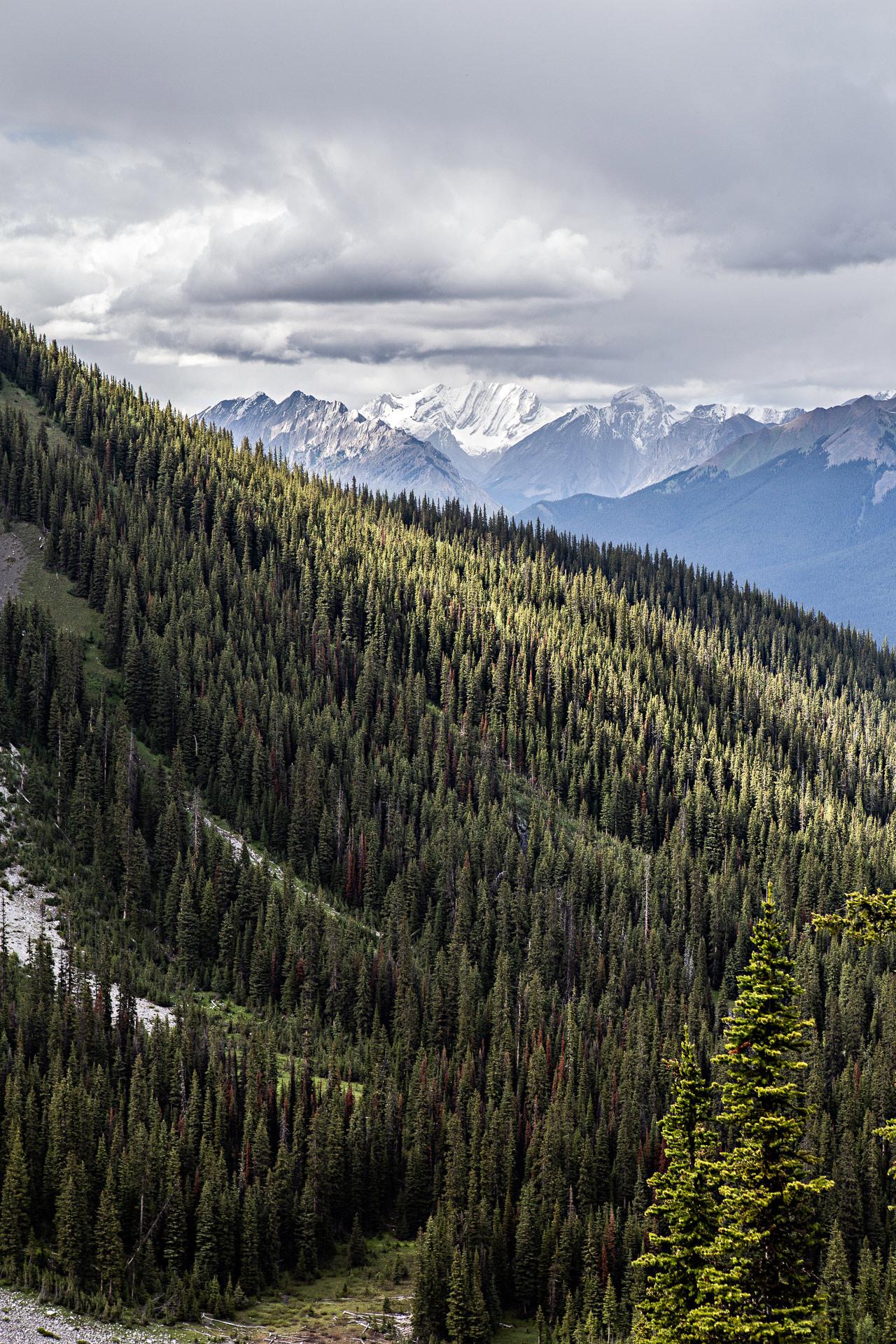 C Level Cirque Hiking Trail Banff Canada