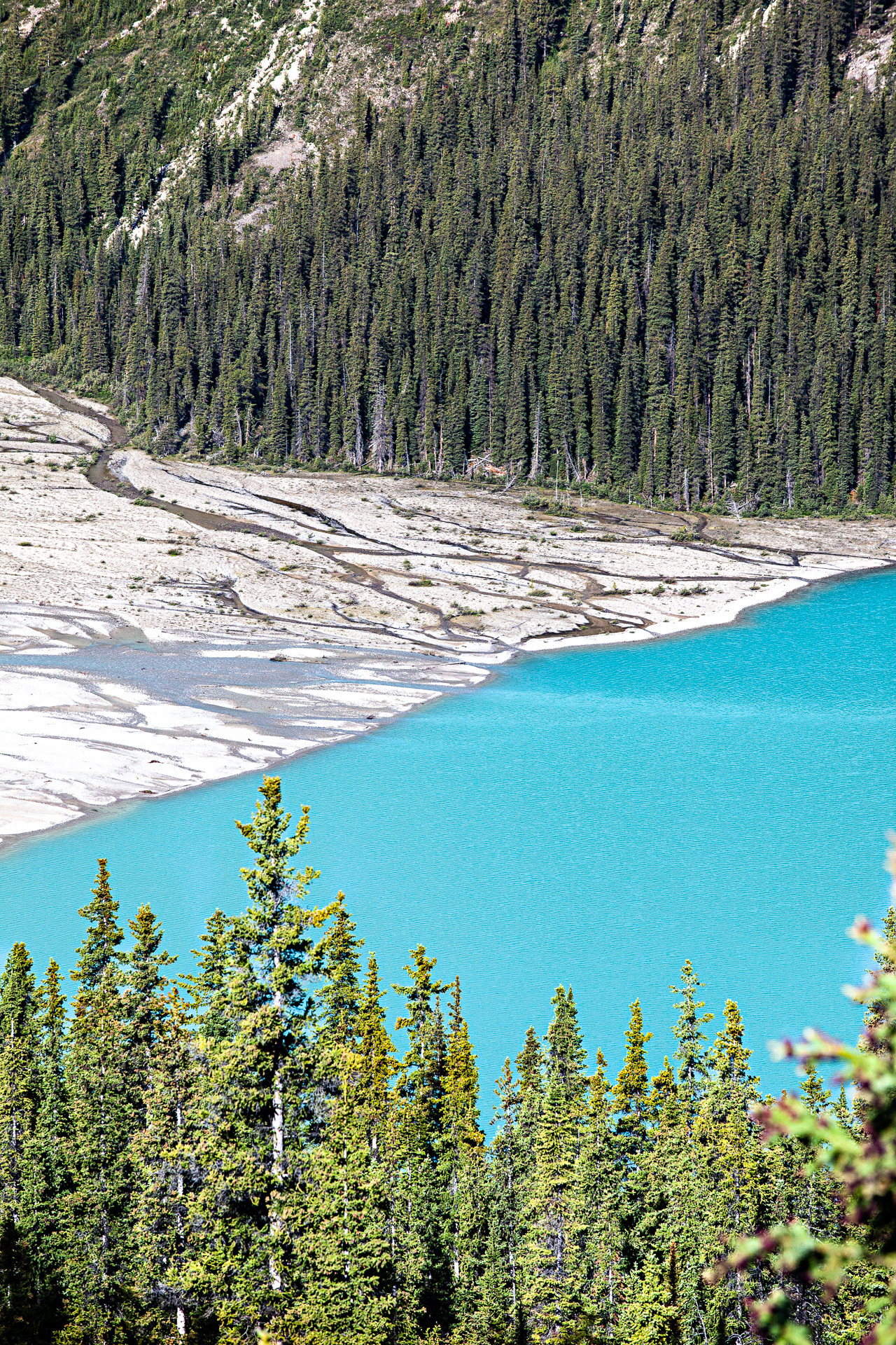 Peyto Lake Banff Alberta Canada