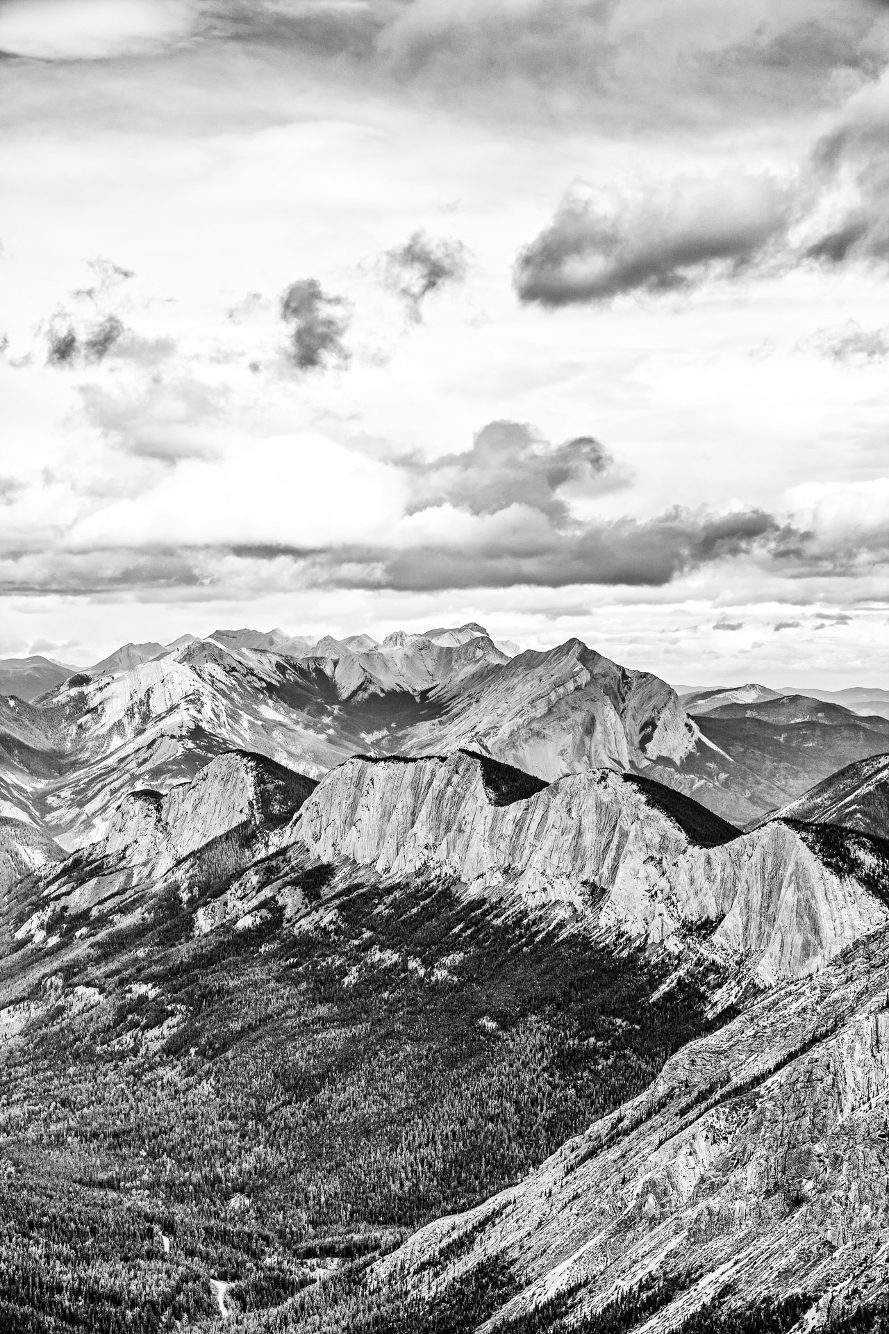 Sulphur Skyline Trail Jasper ALberta Canada