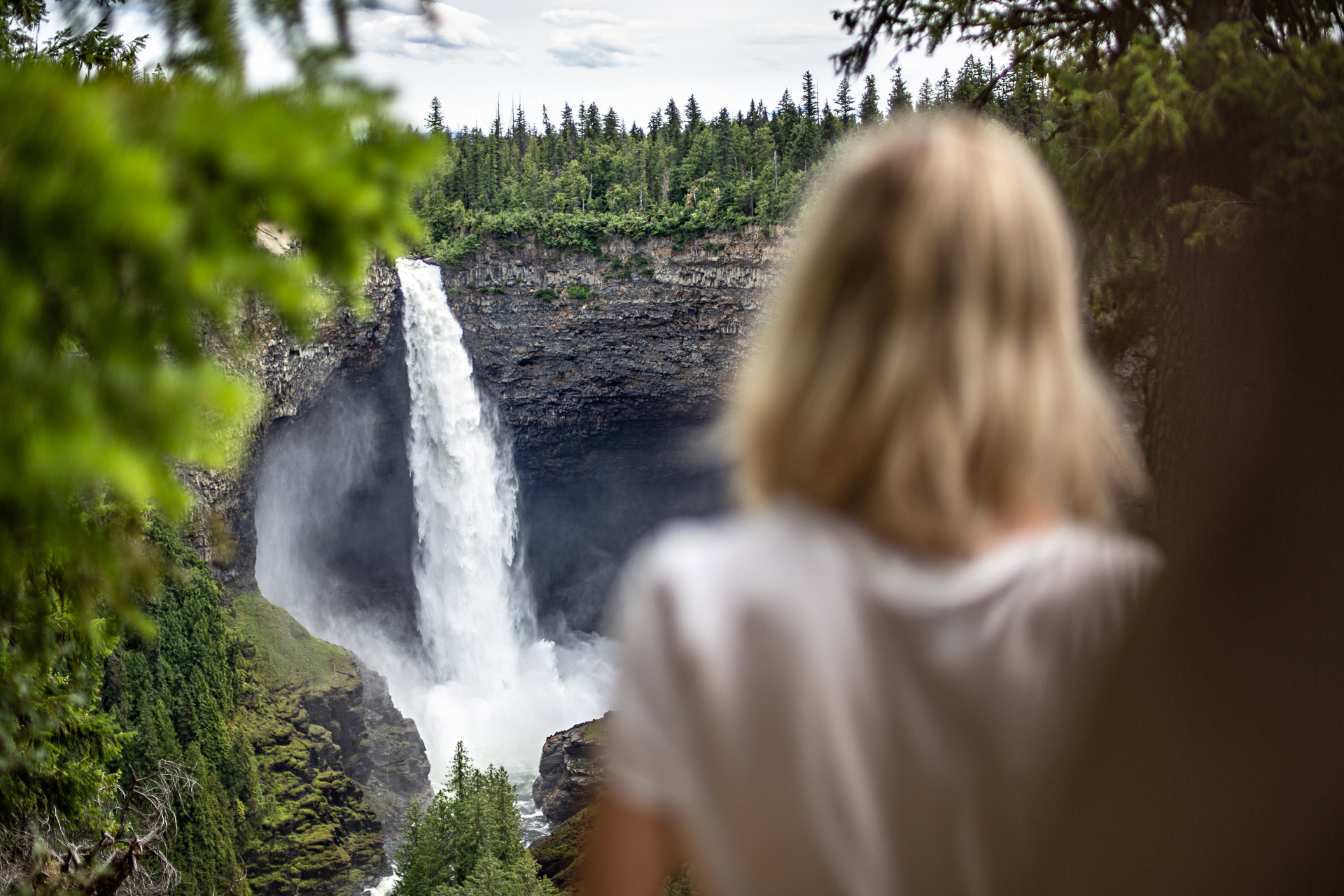 Helmcken Falls Wells Grey Canada