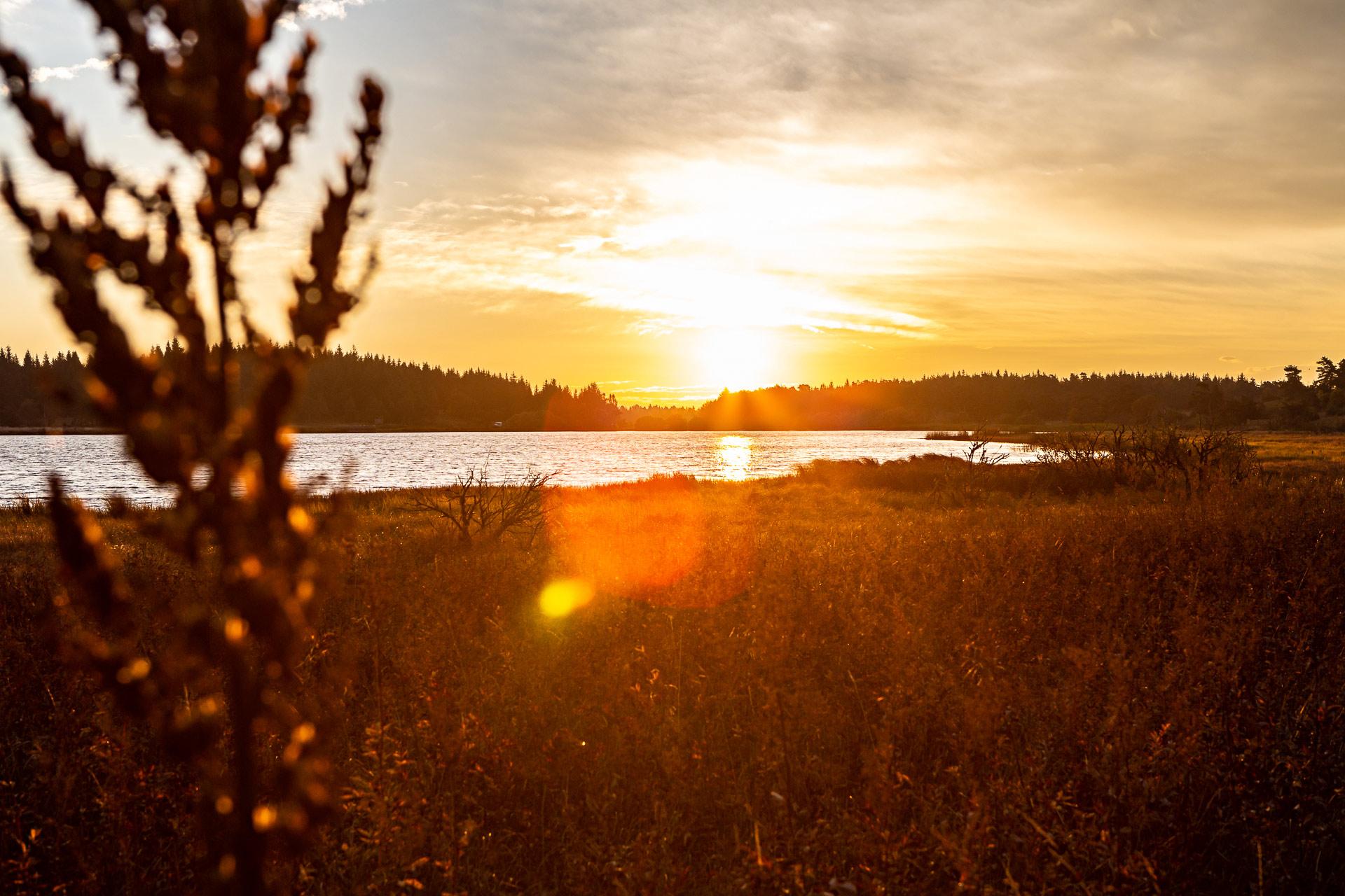 Lever soleil lac Pêcher en Auvergne