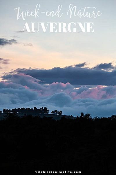 sejour-nature-auvergne-blog-wildbirdscollective-5