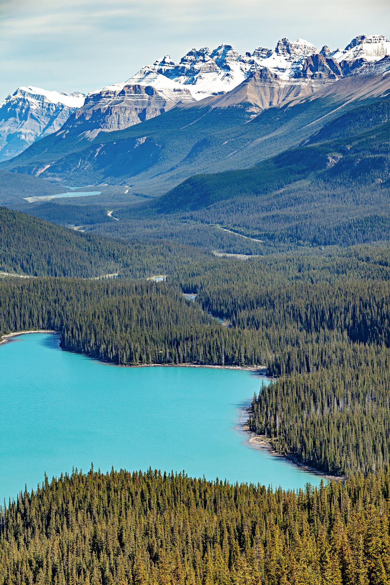 Lac Peyto promenade des Glaciers Canada