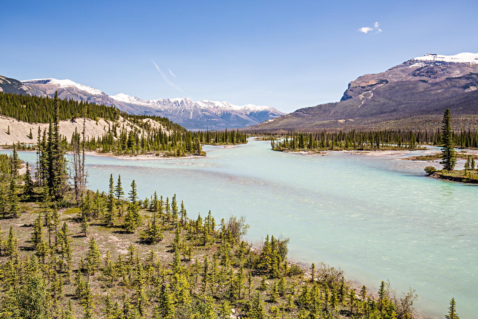 Rivière Saskatchewan promenade des Glaciers Canada