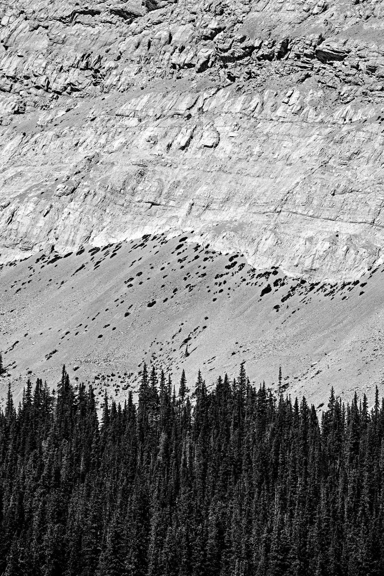 Rocheuses promenade des Glaciers Canada