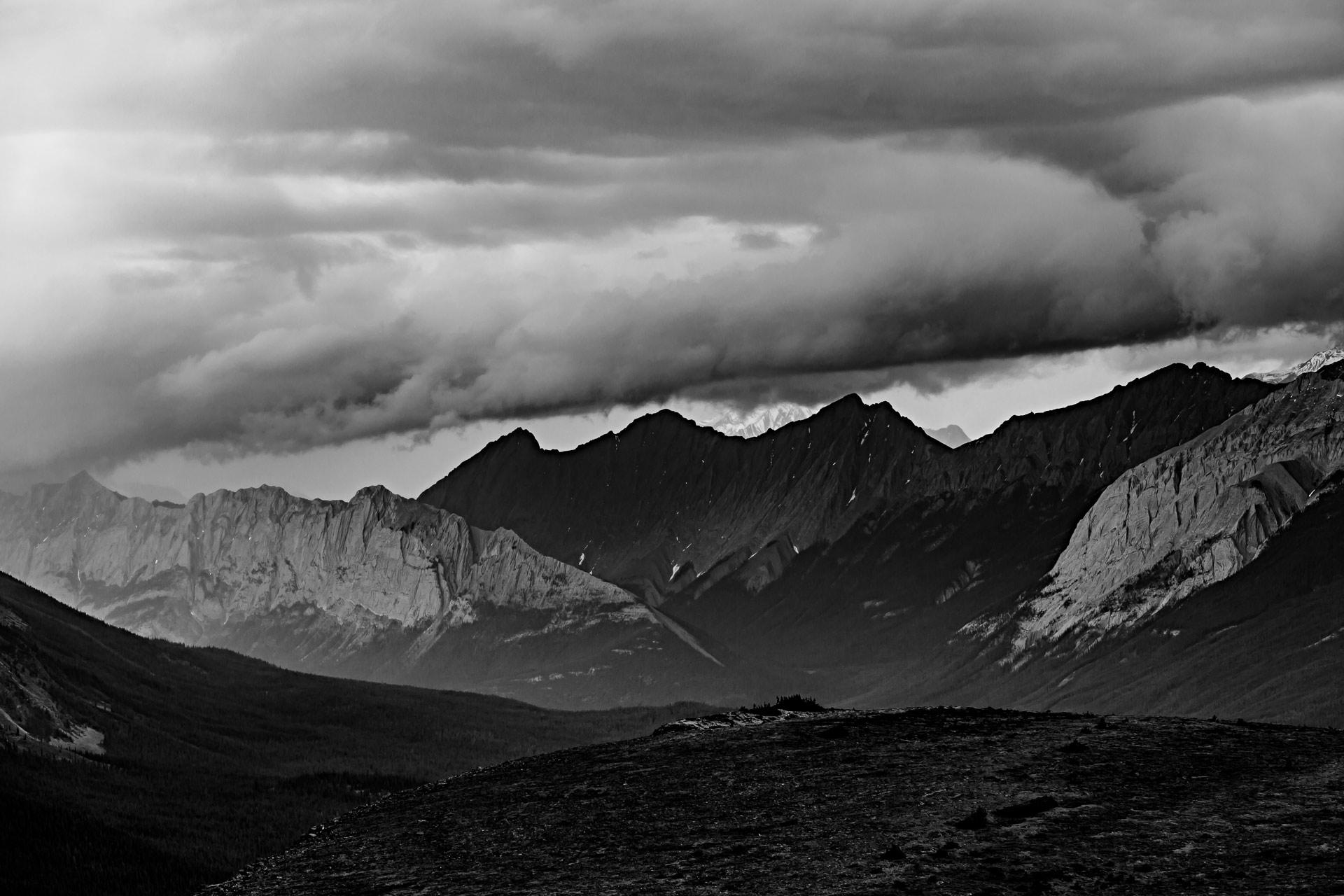 Bald Hills Trail Jasper Canada Ouest