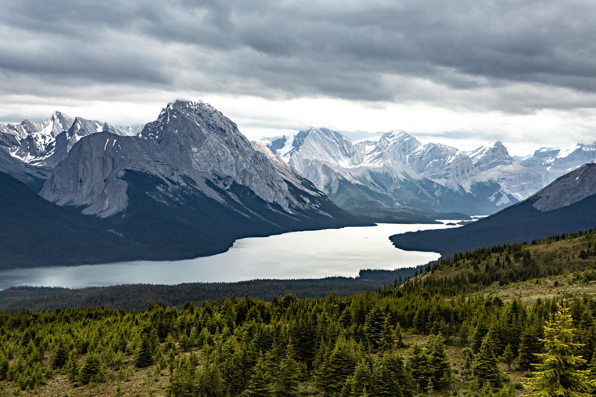 Bald Hills lac Maligne Jasper Canada