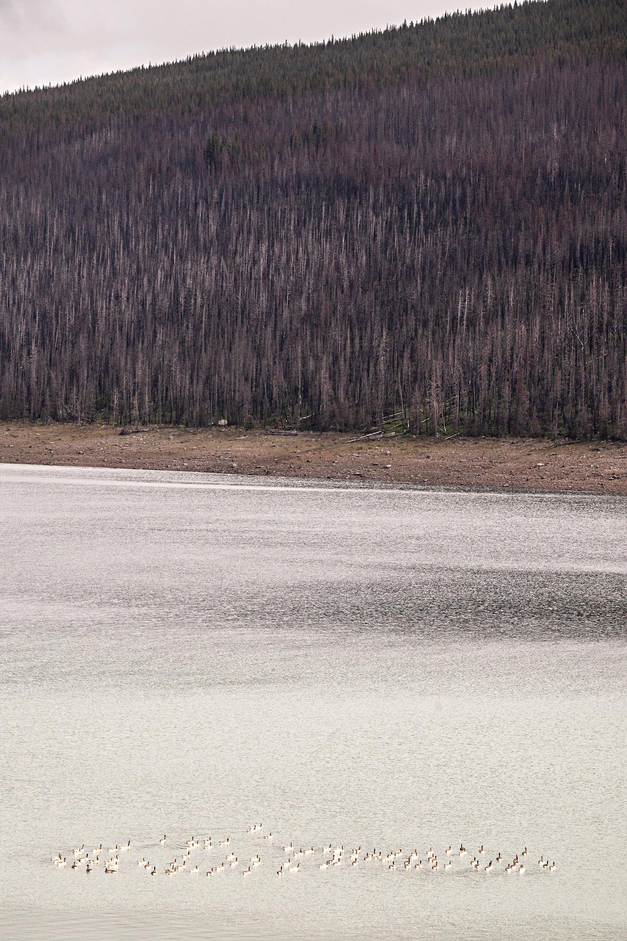 Lac Medicine Jasper Alberta Canada
