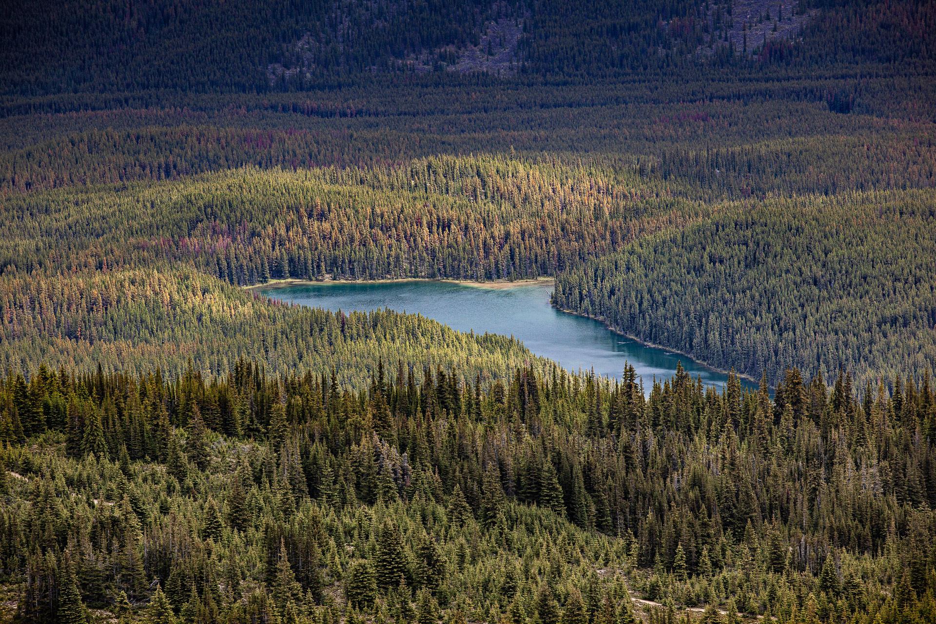 Lac Mona Jasper Alberta Canada