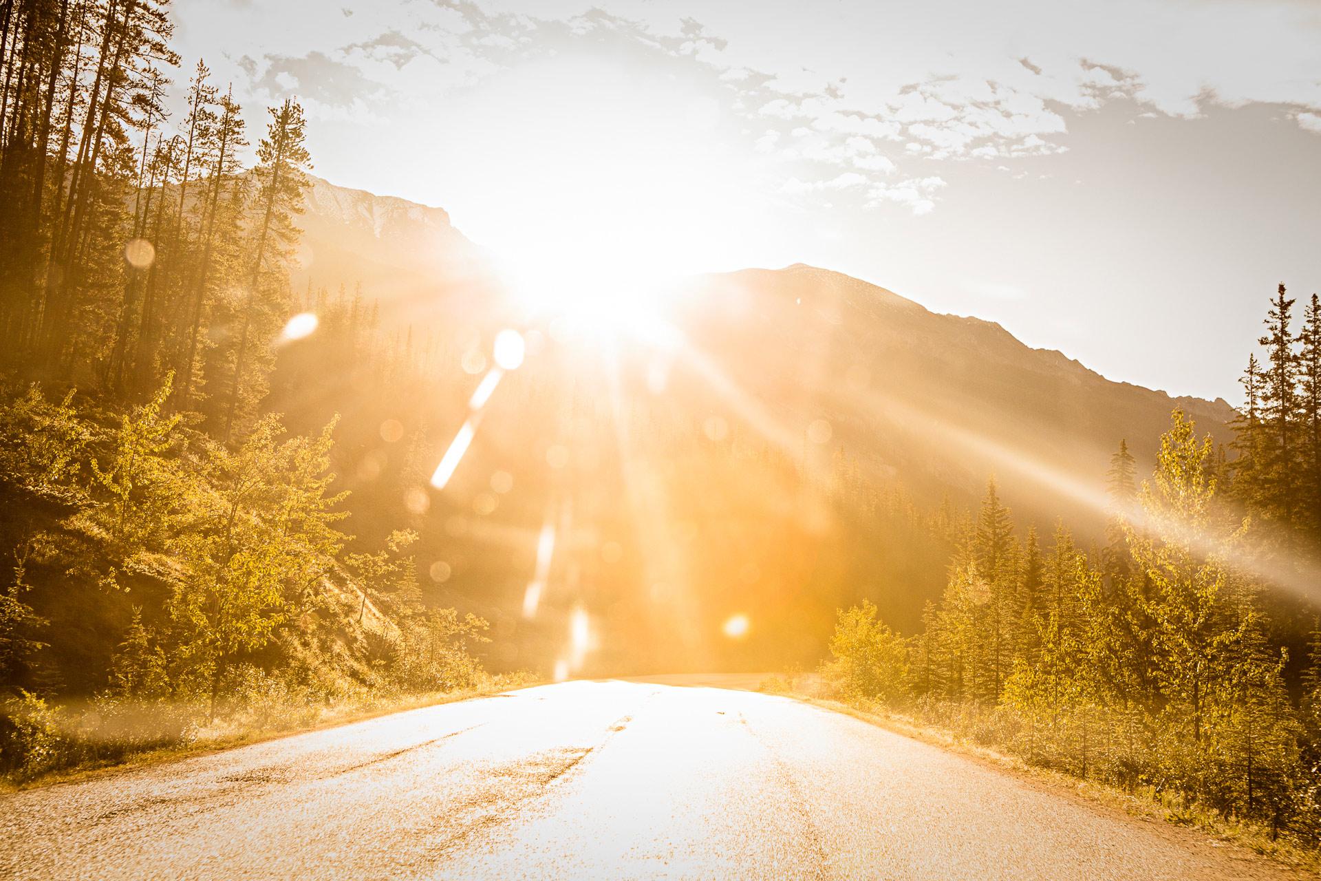 Route Maligne Jasper Alberta Canada