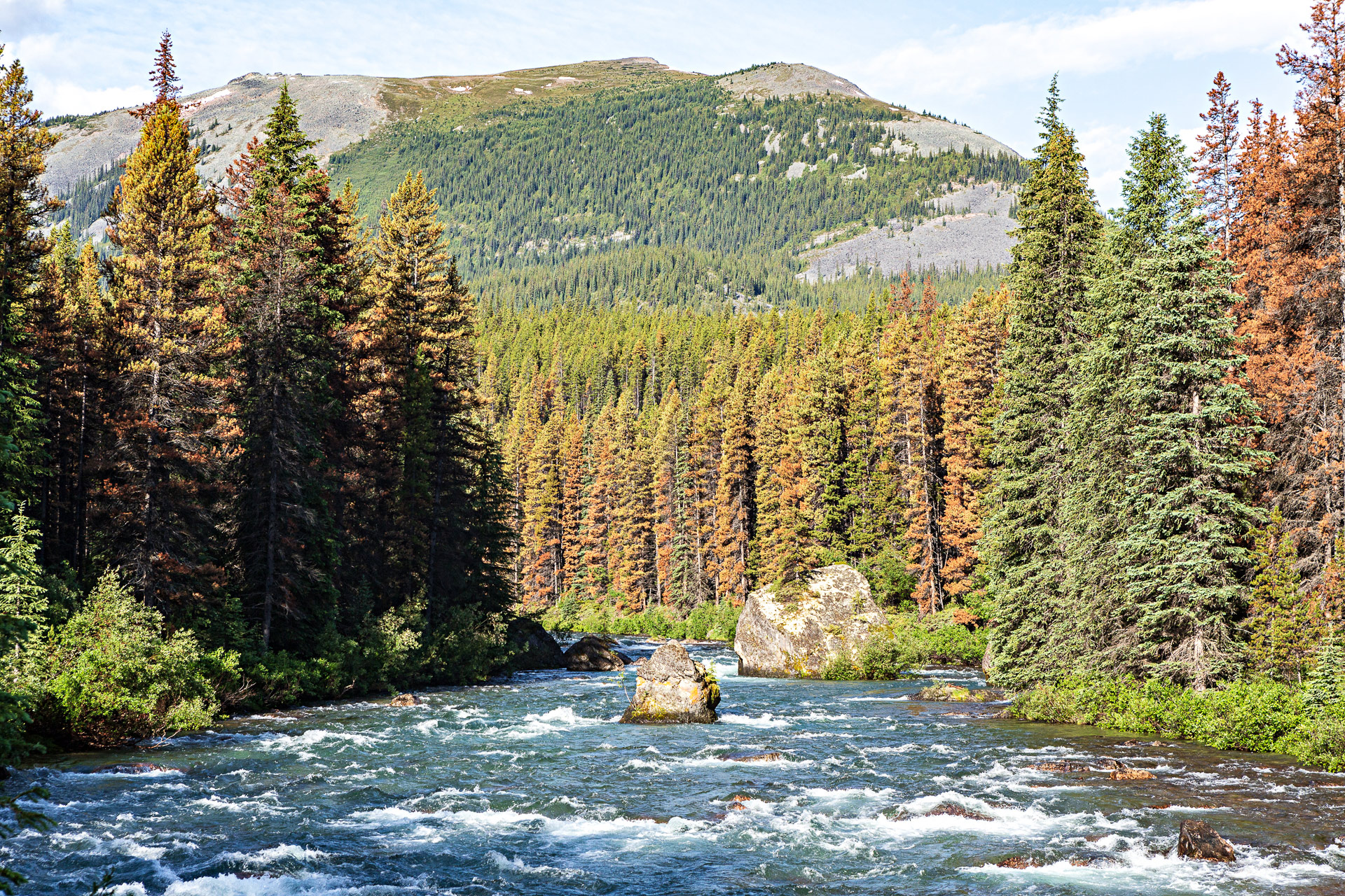 Rivière Maligne Jasper Canada Ouest