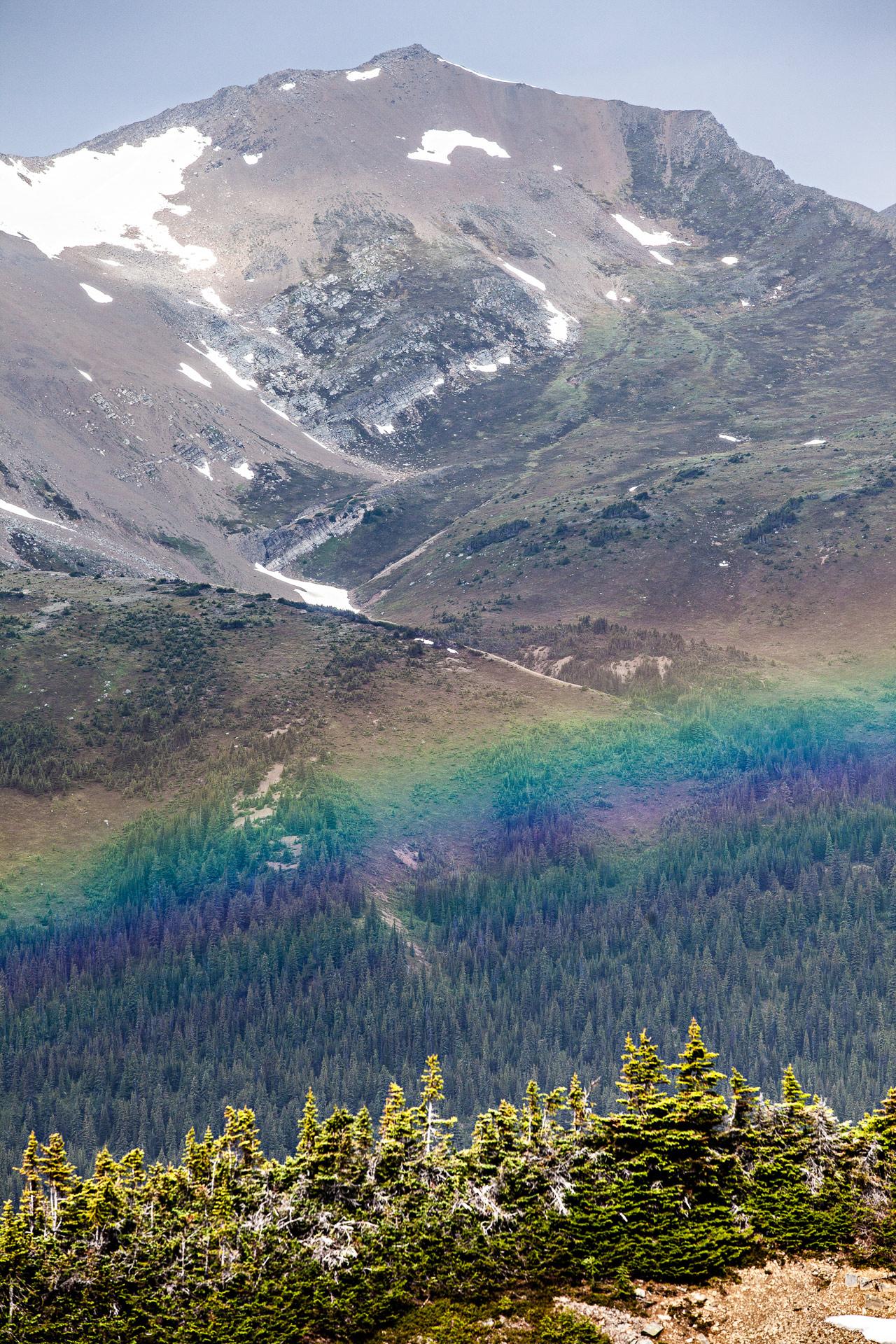 Arc en ciel Bald Hills Trail