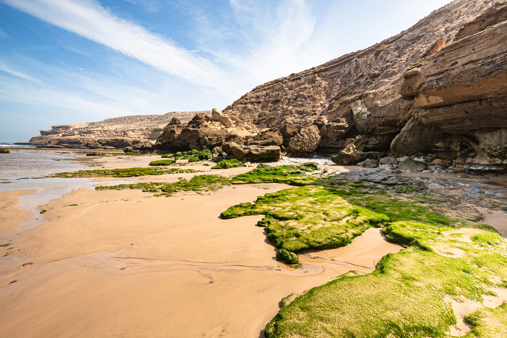 Trek au Maroc Agadir Essaouira algues vertes