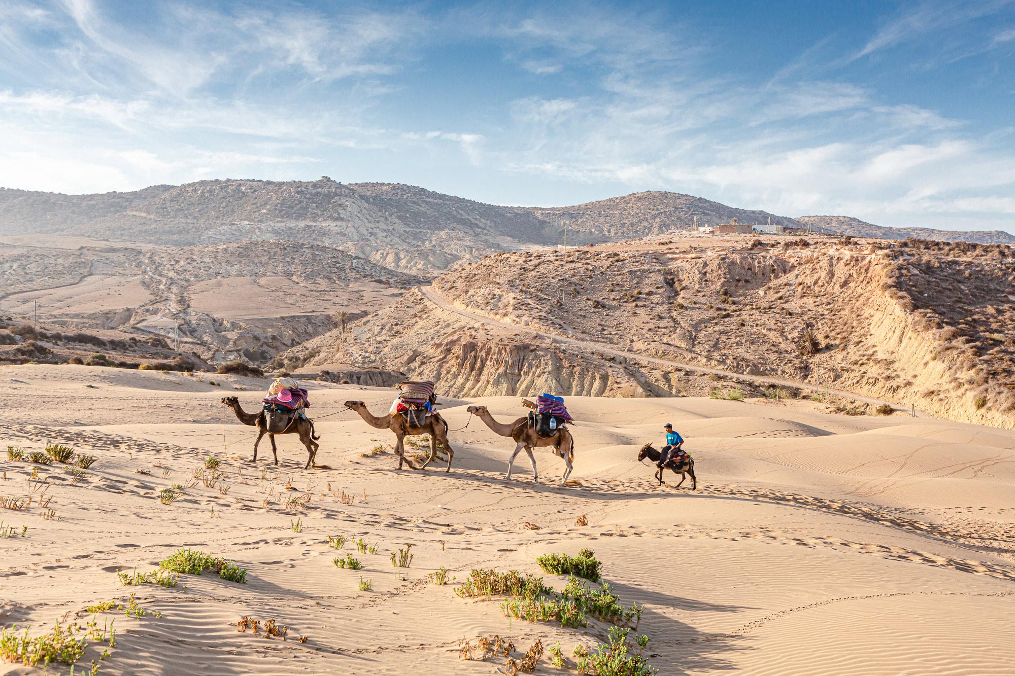 Trek au Maroc avec dromadaires