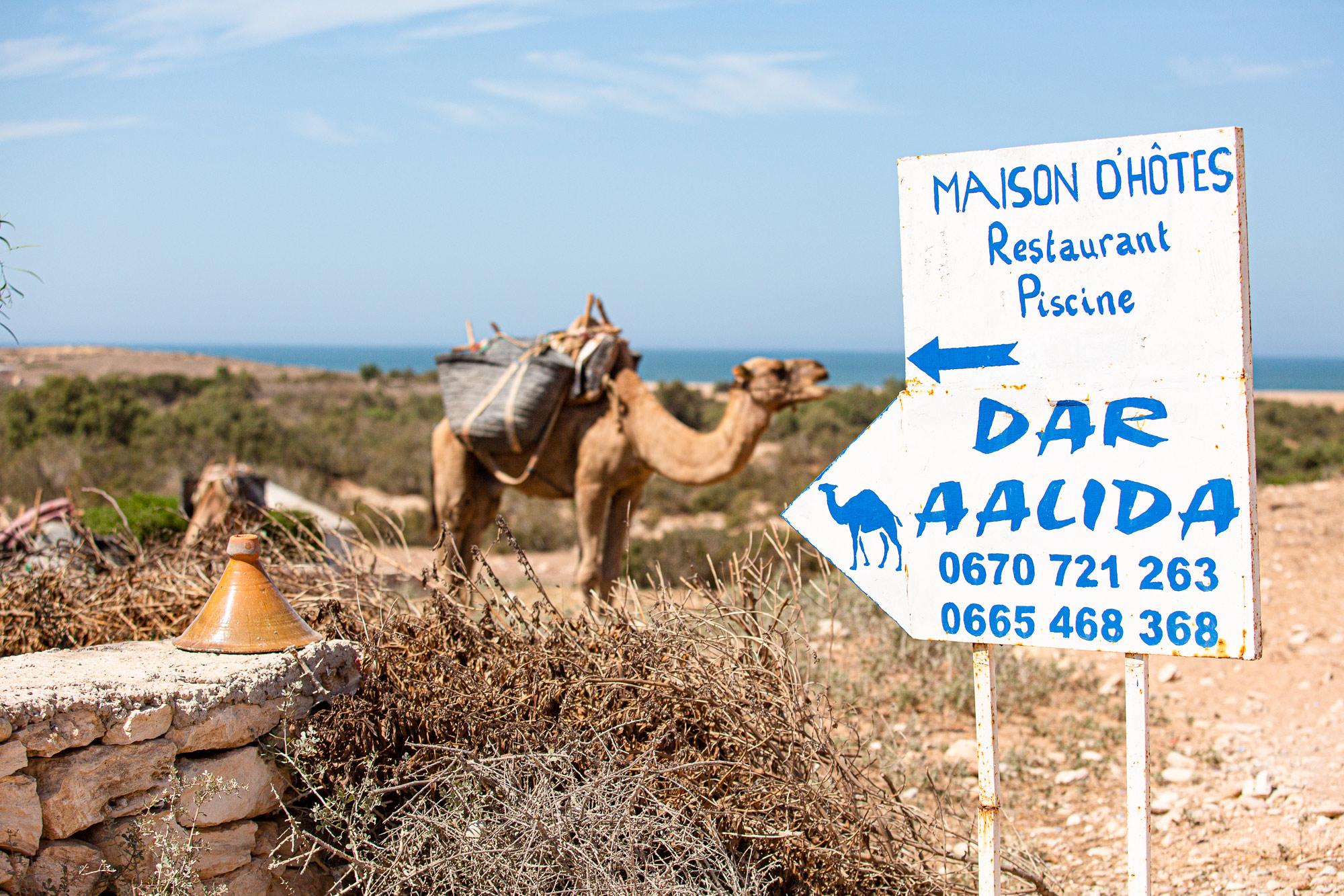 Trek au Maroc Sidi Kaouki Dar Aalida