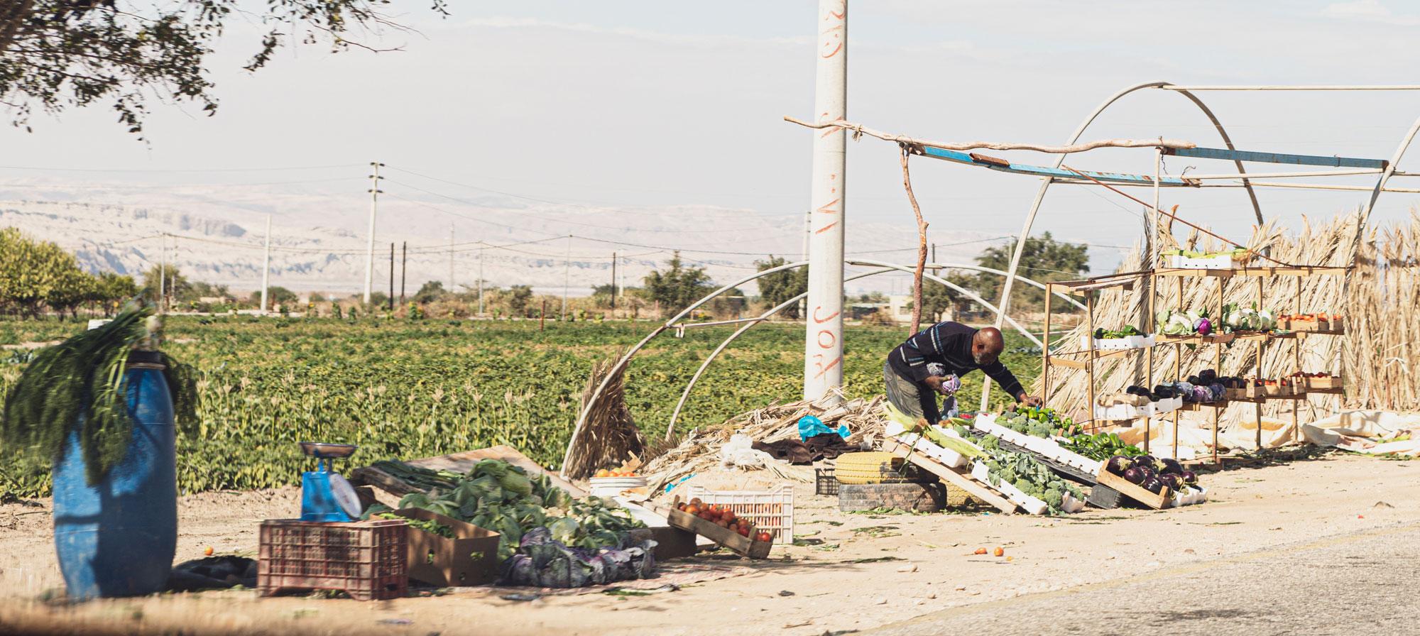 voyage en Jordanie marchés fruits légumes