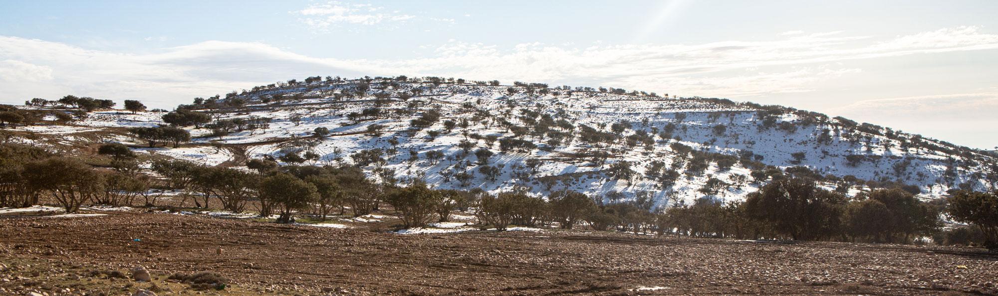 voyage en Jordanie neige